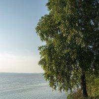 На берегу Волги :: Валерий Смирнов