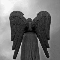 Ангел :: Павел Зюзин