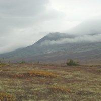 горы :: Олеся Балбышкина