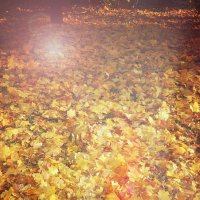 осень :: solar world ....