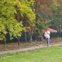 Осень-незнакомка :: Ярослав Харченко