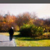 Осень. Монокль. :: Nn semonov_nn