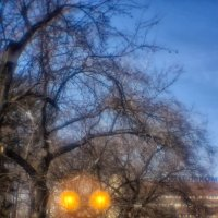 Сквер. Монокль. :: Nn semonov_nn