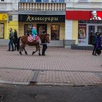 Наездница :: Максим Баранцев
