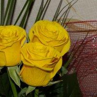 Летние цветы :: Владимир Мазур