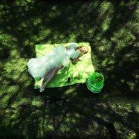 Летняя зелень короткого лета :: Владимир Бондарев
