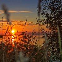 Вечер на Волге :: Роман Макаров