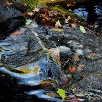 Музыка воды :: Снежана Деменова