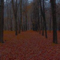 Иной лес :: Yar Morgan