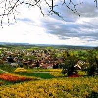 Осень наступает.... :: Viktor Schnell