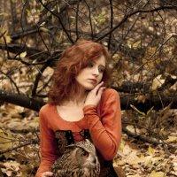 Наступает осень :: Евгения Лисина