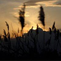 Просто закат :: Сергей Андриянов