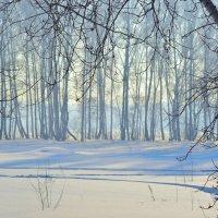Зима :: Владимир Анакин
