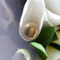 Кольца :: Алмаз Сафаргалин