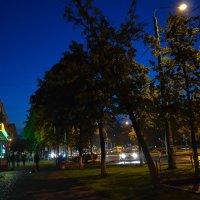 Ночная улица :: Аня Анечка