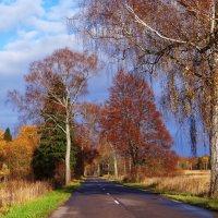 Осень... :: Антонина Гугаева