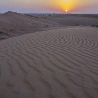 Пустынный пейзаж :: Андрей Шаронов