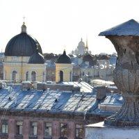 Крыши Питера :: Евгений Киреев