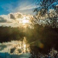 Природа - Удивительное рядом :: Тагир Гасратов