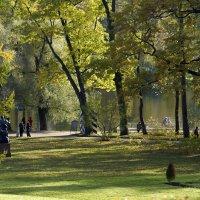 Зеленое золото :: Валентина Харламова