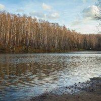 Осенний пруд :: Константин Фролов