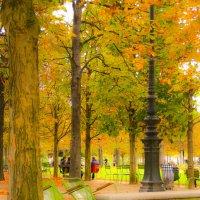 Осень в Париже :: Oxana Eremeeva