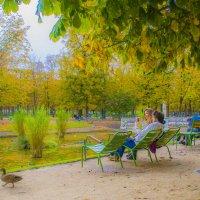 Осень в Париже. :: Oxana Eremeeva