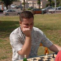 Шахматы на свежем воздухе :: susanna vasershtein