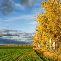 Про осень... :: Влад Никишин
