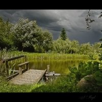 У пруда перед грозой.... :: Елена Kазак