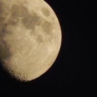 Луна :: Калгиза Осмонова