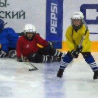 Защита :: Татьяна Бойцова