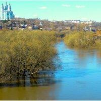 Смоленск. Половодье на Днепре. :: Игорь