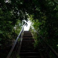 Свет в конце лестницы :: Евгений Евдокимов