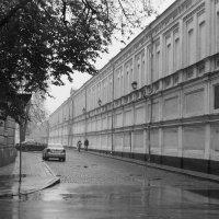 б.н. :: Николай Витрук