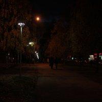 Осенняя аллея :: Александр Килямов