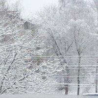Зима :: Оля Егорова
