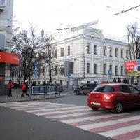 Красно-белая зебра :: Наталья Тимошенко
