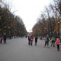 В осеннем парке :: Наталья Тимошенко
