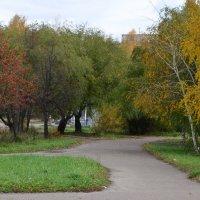 последние краски осеннего сквера :: Константин