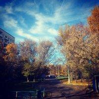 осень :: Анютка Байкалова