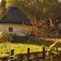 Выйду на улицу, гляну на село :: Ирина Данилова