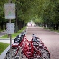 Москва велосипедная. :: Роман Полианчик