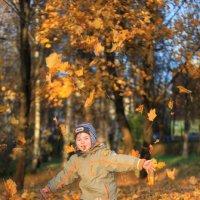 Осень :: Оксана Карцева