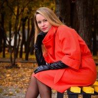 Осенняя прогулка :: Людмила Доманова
