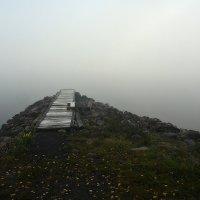 Утро туманное. :: Николай Тренин