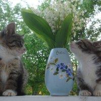 ах, какой аромат... :)) :: Mariya laimite