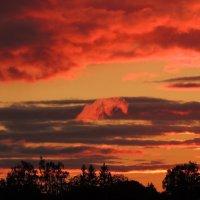 Sunset 2 :: Татьяна Наркевич
