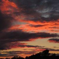 Sunset :: Татьяна Наркевич