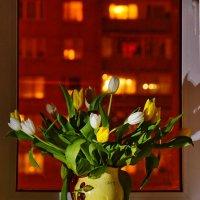 цветы на окне :: Александр Шурпаков
